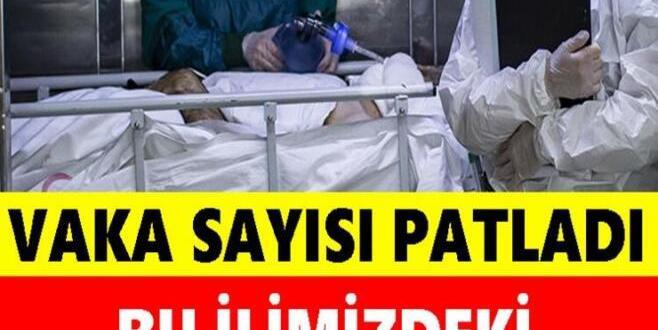 Bu İlimizdeki Vakalar İstanbul'u Solladı!
