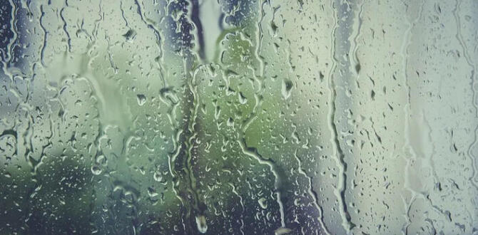 Meteoroloji İstanbul Hava Durumu- İstanbul'da Yağış Olacak Mı?