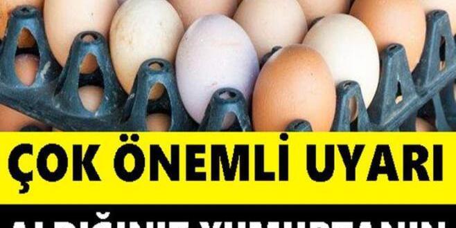 Aldığınız Yumurtanın Üzerinde Üç Rakamını Görürseniz..