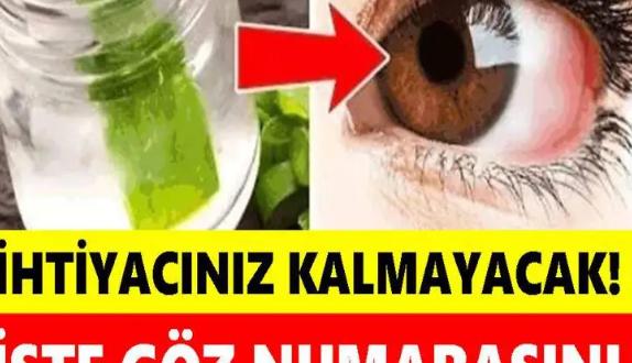 Gözlükleri Atın Gitsin İhtiyacınız Kalmayacak!İşte Göz Numarasını Düşüren Bitkiler